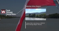 Ride on a boat through Wachau